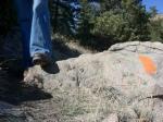 Maroon Bells Trail Marker